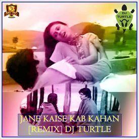 Jaine Kaise Kab Kaha Iqraar Ho Gaya Remix - DJ Turtle