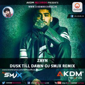 Zayn - Dusk Till Dawn-DJ SMJX ReMix