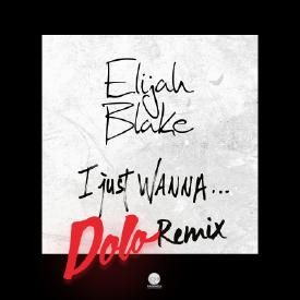 I Just Wanna…(Dolo Remix)