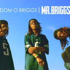 Dom O Briggs - Mr. Briggs Cover Art