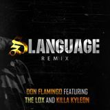 DON FLAMINGO - Slanguage (Remix) Cover Art
