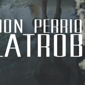 Don Perrion - Latrobe [prod. by Billionaire BoyScout]