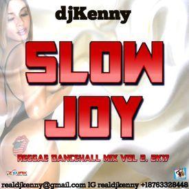 Slow Joy Vol. 2 (Reggae & Dancehall Mixtape 2017)