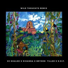 Wild Thoughts (remix)