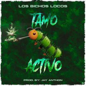Tamo Activo (By JGalvez)