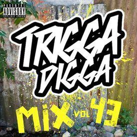 Trigga Digga Mix Vol. 43 (Hip-Hop, Dancehall & Afrobeat Mixtape 2017)