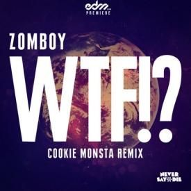 WTF! (Cookie Monsta Remix)