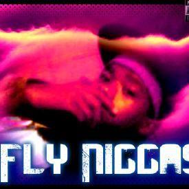 Fly Niggas