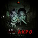 EL Vicker - Akpo Cover Art