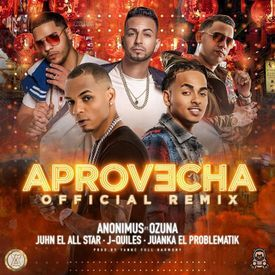 Aprovecha (Official Remix)