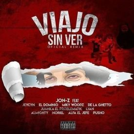 Viajo Sin Ver (Official Remix)