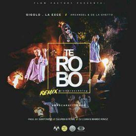 Te Robo (Official Remix)