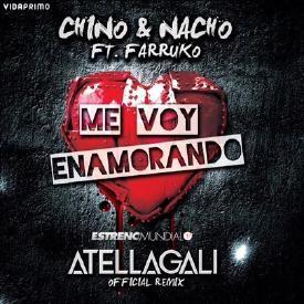 Me Voy Enamorando (Official Remix)
