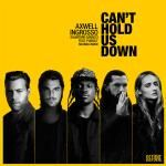 FistInTheAir.com - Can't Hold Us Down Cover Art