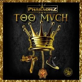 Too Mvch [Produced by Flight School]