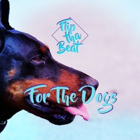 Flipthabeat For The Dogs Dmx Type Beat