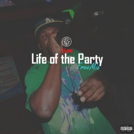 Life of the Party Freemix
