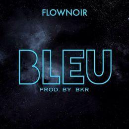 Flownoir - Flownoir - Bleu Cover Art