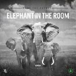 FlyTunez.com - Elephant In The Room Cover Art