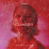 Foundation Media - Cannabis Cover Art