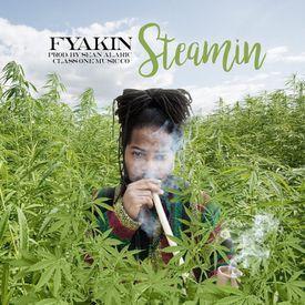 Steamin