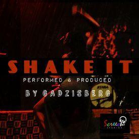 Shake It[Prod_By_ Gadzisberg]