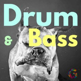 #12 • Drum&Bass • devil may cry
