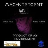Greg Wise - Product Of My Environment Cover Art