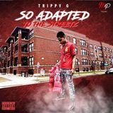 GunRusHottestMixtapes - So Adapted To The Streetz Cover Art