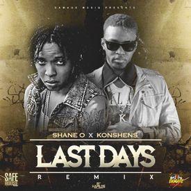 Last Days Remix