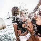 Harold Taylor - Champagne Splash Cover Art