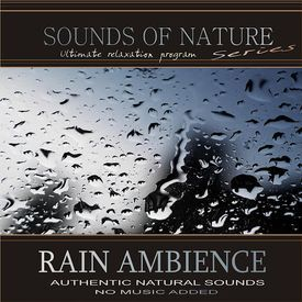 Rain Ambience (Nature Sounds)