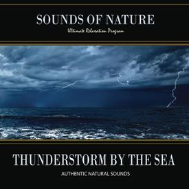 Thunderstorm By The Sea (Nature Sounds)