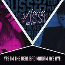 Puss (Unpretty Rap Star)