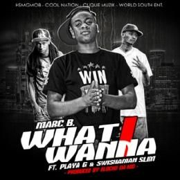 DJ Crazy C - What I Wanna CLEAN Cover Art