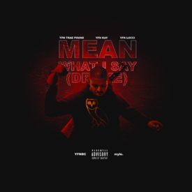 Mean What I Say (Drake)