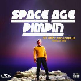 Space Age Pimpin(DJ Service Pack)