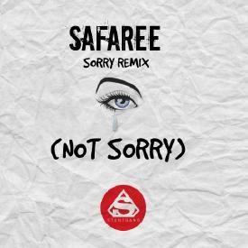Sorry remix
