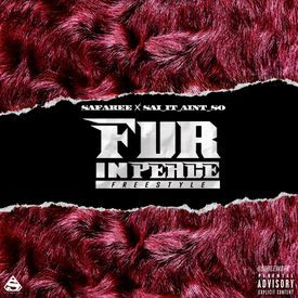 FUR IN PEACE FREESTYLE