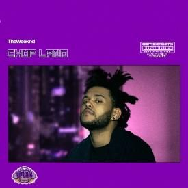 Professional (Chopped Not Slopped)