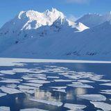 imchrles - Arctic [Prod. by SedOnThaTrack] Cover Art