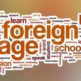 Jamaree Hopson - Foreign Cover Art