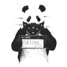 MC Kitinho - Como Que Eu Tô