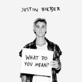 Justin Bieber - What Do You Mean