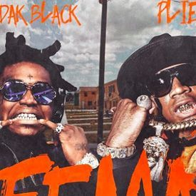 F.E.M.A (Fast) **Download Link**
