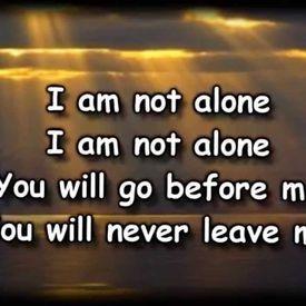 I Am Not Al0ne