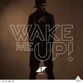Avicii -Wake Me Up (Audio)