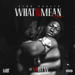 Kidd Coolin - What You Mean [Remix/Freestyle] Cover Art