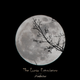 The Lunar Experience