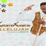 kwekumasimol - HalleluJah Cover Art